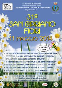 festadeifiori2014